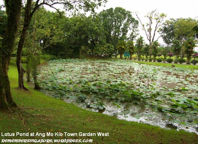 ang mo kio town garden west3