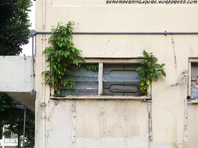 ang mo kio street 21 en bloc flats5