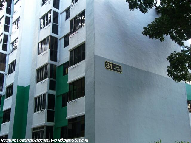 havelock road and taman ho swee en bloc flats5