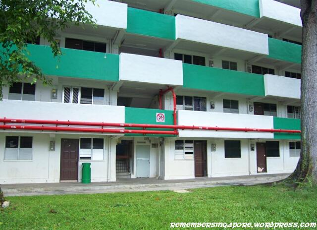 havelock road and taman ho swee en bloc flats6