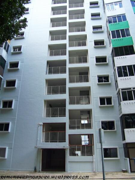havelock road and taman ho swee en bloc flats7
