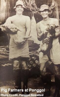 ponggol pig farmers