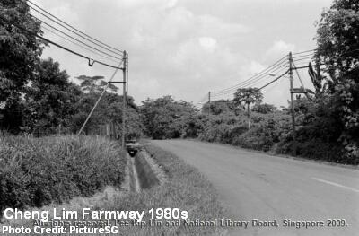cheng lim farmway 1980s