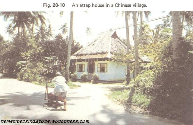 1982 chinese village