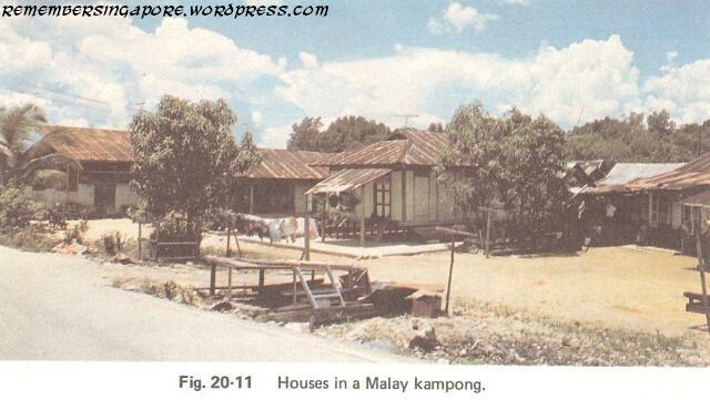 1982 malay kampong