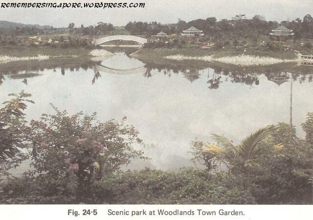 1982 woodlands town garden