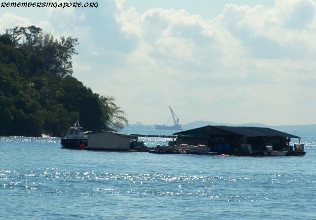 lazarus island2