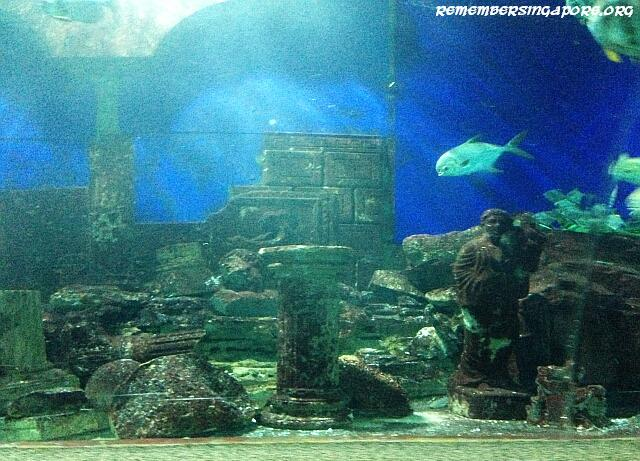 underwater world tunnel3