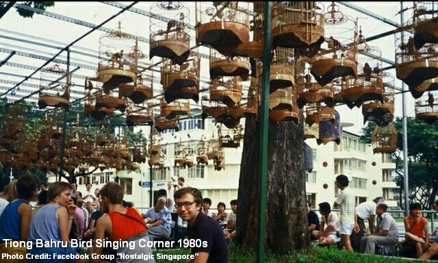 tiong-bahru-bird-singing-corner-1980s