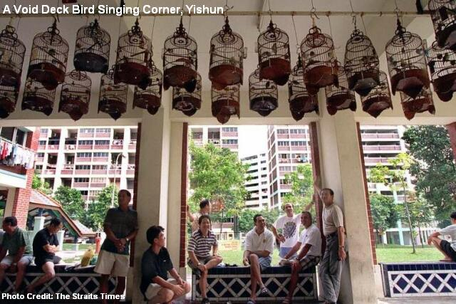 yishun-hdb-flat-void-deck-bird-singing-corner